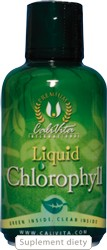 Liquid Chlorophyll (473 ml)